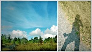 Ja otinpahan vielä kuviakin juostessa...eikä edes hirmu tärähtäneitä:)